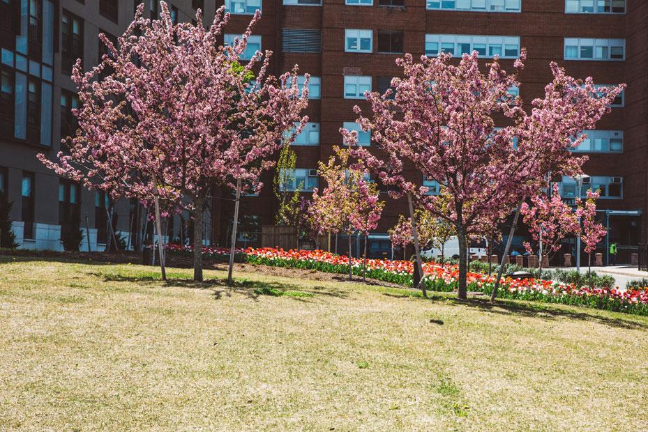 mcnulty-spring-summer-8