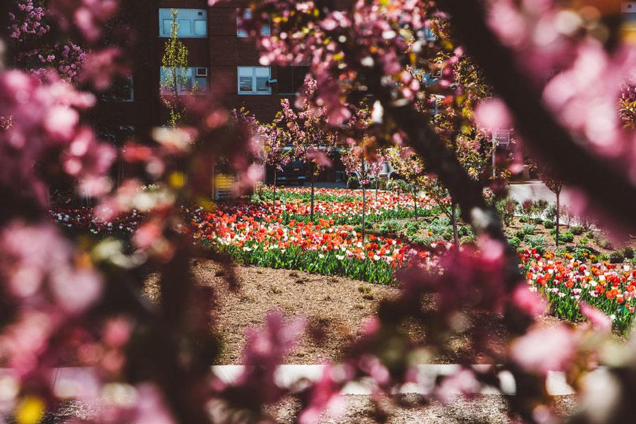 mcnulty-spring-summer-9
